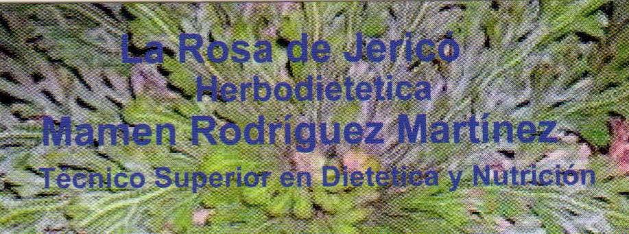 logo_rosa_de_jerico