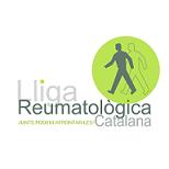 logo lliga catalana